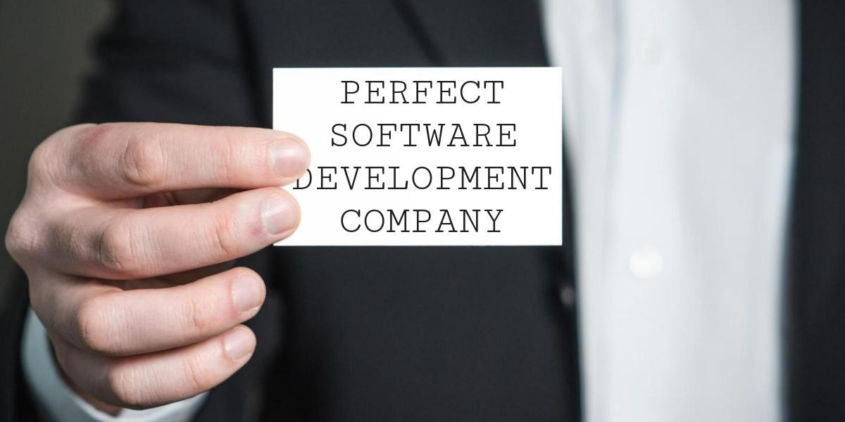 Perfect Software Development Company