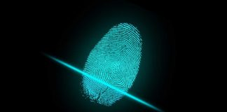 5 Essential Data Protection Tips
