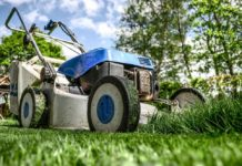 4 Steps To Improving Your Garden